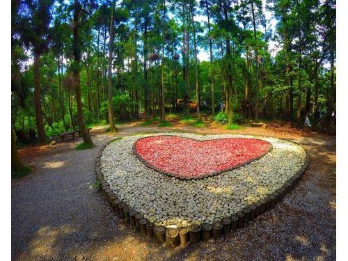「竹子湖黒森林」=xuan_______zoey提供 住所:台北市北投区竹子湖路52号