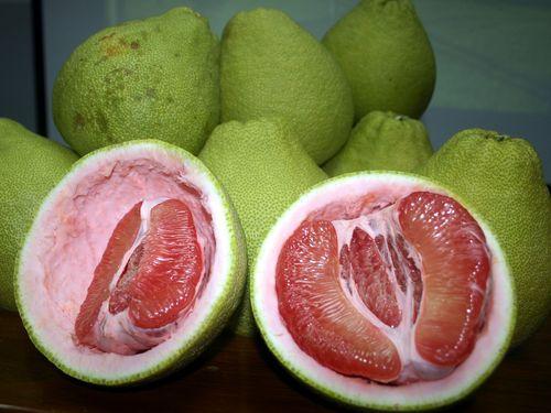 赤い果肉の文旦が収穫最盛期  日本への輸出も/台湾