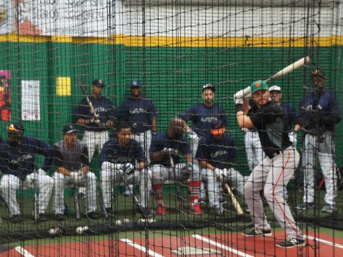 台湾プロ野球、初の海外トライアウト実施  ロッテも視察