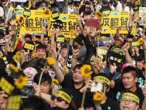 """心に残ったデモのシンボル、台湾""""ひまわり""""学生運動が選出=米メディア"""