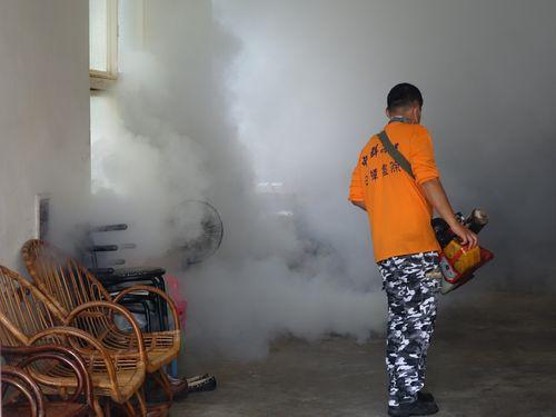被害拡大のデング熱  感染者数6000人目前  台北市でも患者/台湾