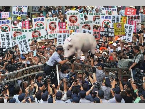 米国産豚肉の輸入再開などをめぐり国会内外で激しい抗議/台湾