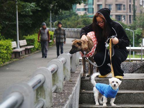 強烈寒気が台湾襲う 各地で今冬の最低気温記録