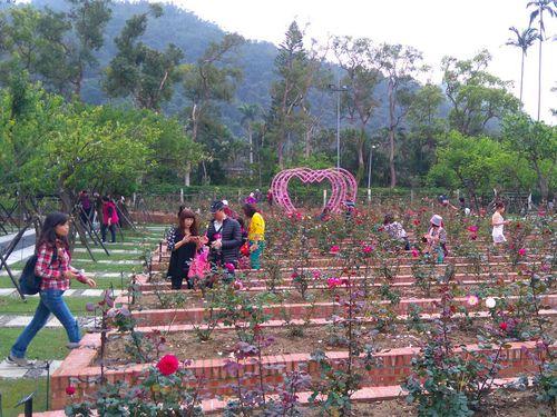 バラ1600株以上咲き誇る 日本の押し花作家の作品も展示=士林官邸/台湾