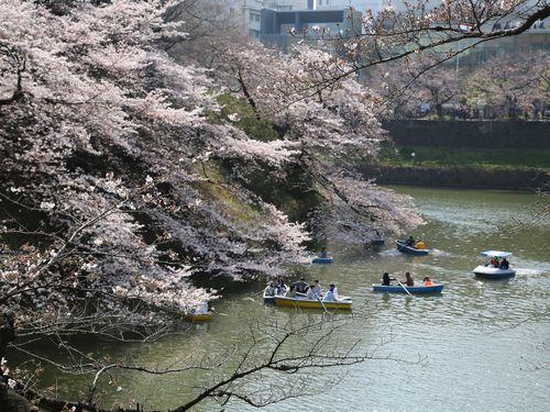 3人に1人が日本へ  魅力は「治安の良さ」=2016年の台湾の海外旅行者