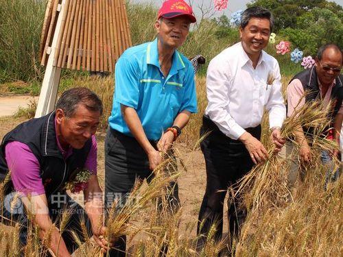 名産のカキと小麦をPR  離島・金門でイベント開幕/台湾