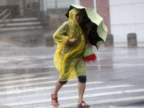 台湾への台風襲来、今年は3~5個の予想