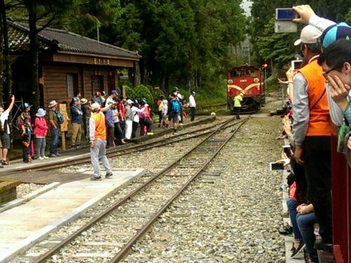 阿里山森林鉄道、2020年に全線復...