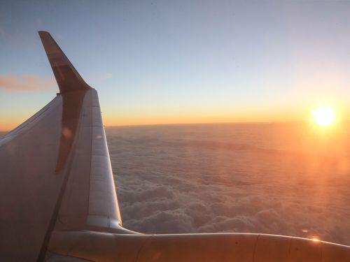 今年の第1四半期、日本へ行き来の旅客最多  クルーズ客船と航空/台湾
