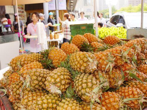 パイナップルの人気品種、日本輸出に向け準備着々/台湾