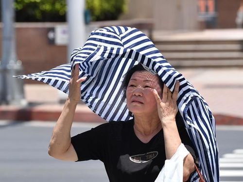 台北で38.5度  今年の台湾最高気温更新