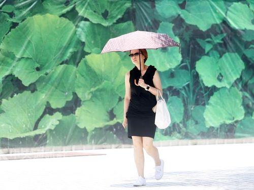 残暑厳しい台湾、日中の最高気温36度  月末には一変して秋の気配