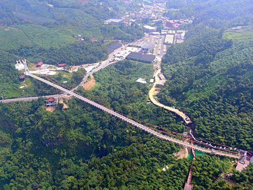 台湾最長のつり橋、嘉義で供用開始 標高1000メートル 絶景広がる