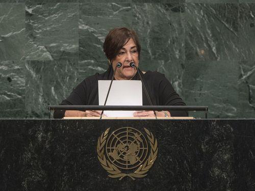 国交樹立国15カ国が台湾支持を表明 昨年より増加=国連総会