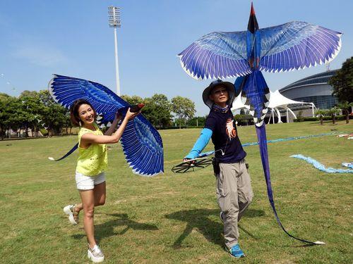 北海岸たこ揚げフェス、今年の目玉は110羽つながった台湾の「青い鳥」