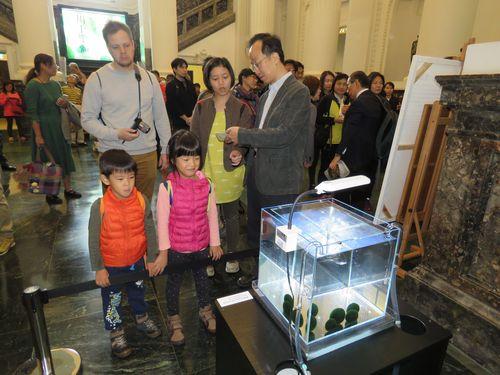初めてのマリモに興味津々 台湾で特別展示 海外初