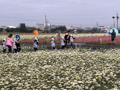 台湾新幹線・嘉義駅近くで楽しむ色とりどりの「花の海」  10日から