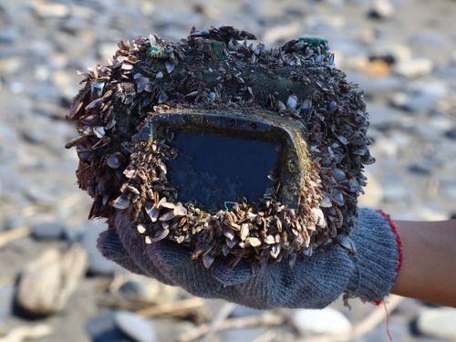苔や貝殻がこびりついていたカメラの防水ケース=Park Leeさんのフェイスブックより