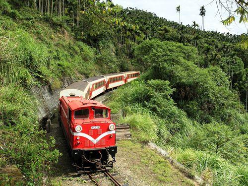 阿里山森林鉄路の本線(嘉義-十字路)が相次ぐ脱線事故で3月中旬から3カ月運休している。このため、今回のキャンペーンは祝山、神木、沼平の各支線が対象=同鉄道管理処提供