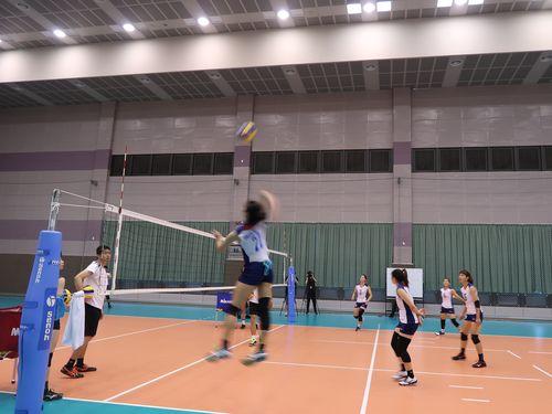 バレーボール女子の台湾代表メンバーら=資料写真