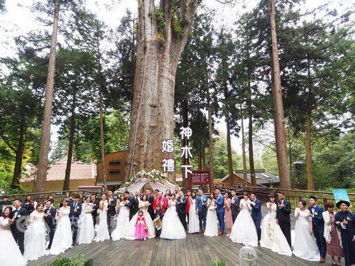 阿里山での合同結婚式に参加したカップルら=阿里山国家風景区管理処提供