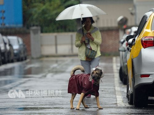 前線通過や北東の風の影響で19日の台湾は北部や東部、山地などでにわか雨がある