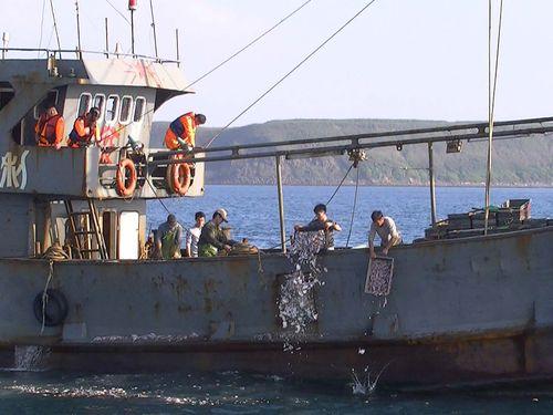 越境操業の中国漁船「ビン東漁65098」(ビン=門構えに虫)/澎湖海巡隊提供
