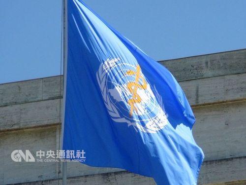 世界保健機関(WHO)の旗(資料写真)