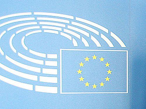 欧州議会の親台派議員ら約20人が、1月30日に行われた本会議で、相次いで台湾支持を表明した