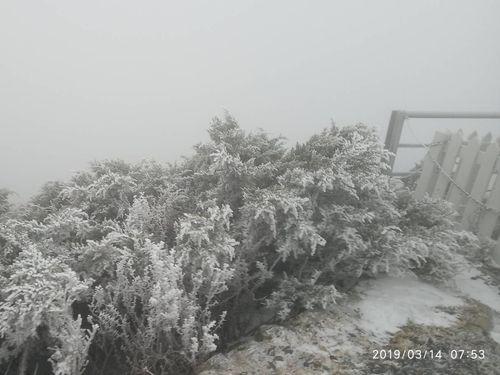 玉山の積雪=中央気象局提供