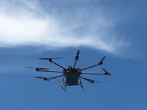 マンゴーを運搬中の小型無人機