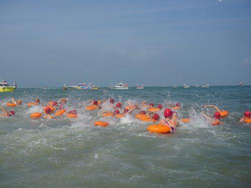 今年で10回目を迎える遠泳大会「金厦海域泳渡」