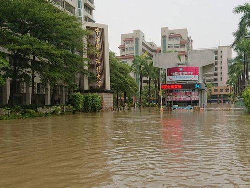 豪雨で冠水した台南市仁徳区