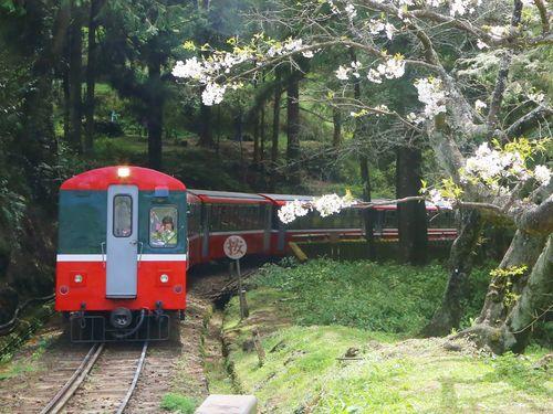 阿里山鉄道、ハイブリッド機関車導入へ