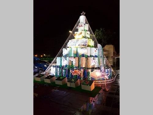 エコすぎる(?)クリスマスツリー