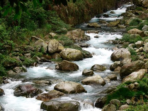 清らかなせせらぎや滝の音に癒される!暑い夏の日は森へ行こう