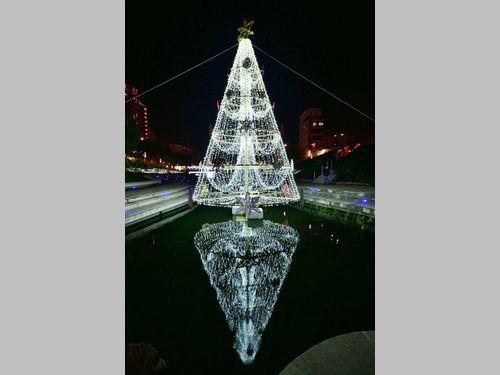 川中のメリークリスマス!水面に映る「逆さツリー」が新鮮