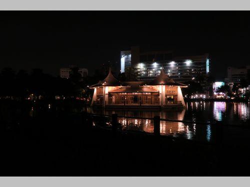 台中公園でライトアップ始まる 幻想的に水辺彩る