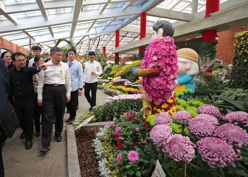 士林官邸の菊花展が開幕 世界7大陸の魅力伝える