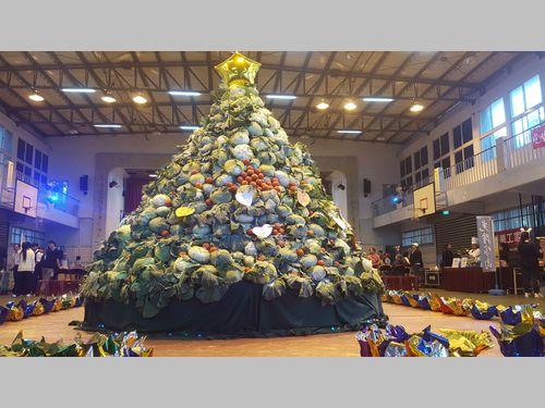 心温まるキャベツのクリスマスツリー 農家への感謝を込めて