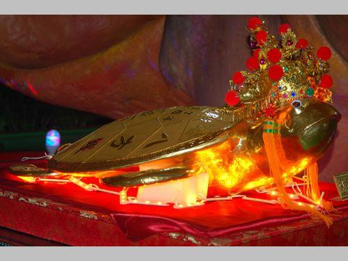 時価3500万超の黄金の亀が注目の的 離島・澎湖の伝統行事