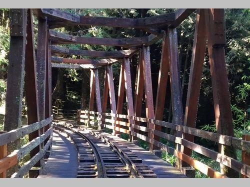 阿里山で日の出や森の音を聞きに行くツアーはいかが