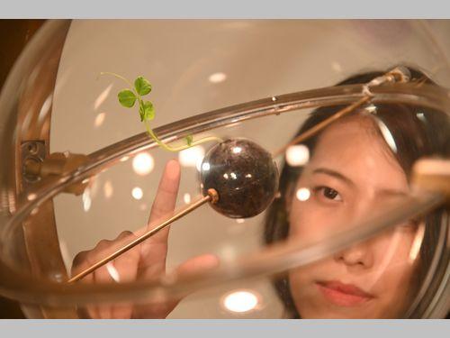 台湾の女子大学院生が作った「植物の生長を制御する」装置、世界の舞台に