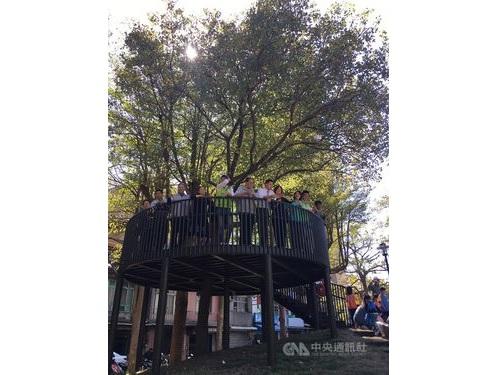 樹齢100年のガジュマル、憩いの場に 北部・新竹市の公園再整備計画