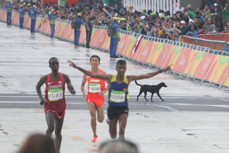 里約奧運 黑狗闖入奧運馬拉松賽道