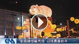 星國豬燈籠亮燈 迎接農曆新年