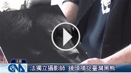 法國攝影師 關注臺灣黑熊