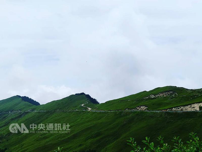 長期在台灣部落推動觀光的美籍導遊羅雪柔說,台灣有山、有大自然與多元文化,卻不懂得展現優點,應更聚焦、大方展現特色。中央社記者蘇木春攝  107年9月9日