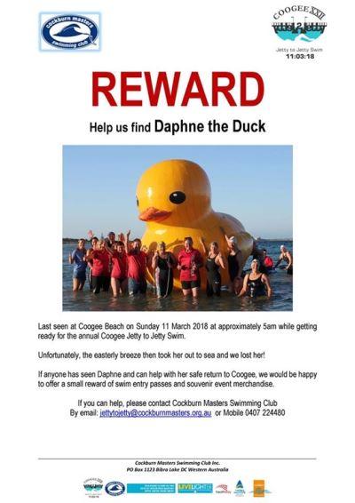 黃色大鴨出海不返 澳洲游泳俱樂部懸賞