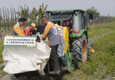 省工馬鈴薯收穫機  彌補農村人力不足